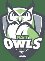 DSST18001-Owls_WhiteFill-1